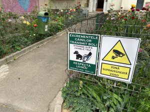 Ce legătură este între excrementele câinilor și restricțiile COVID-19?