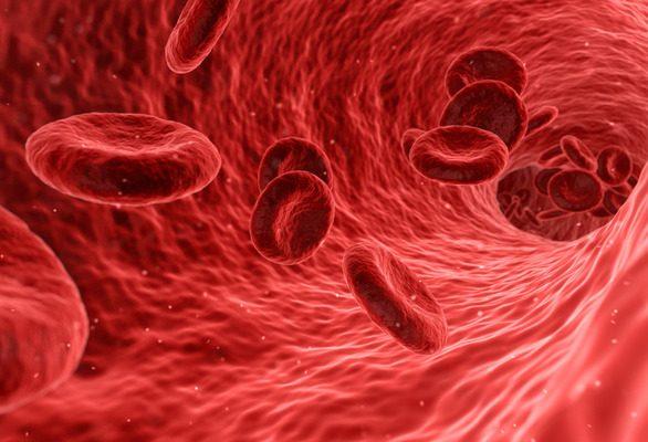 13 lucruri de știut înainte să donezi sânge prima oară